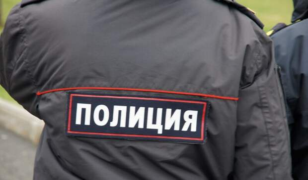 В Оренбурге на улице Чкалова женщина напугала грабителя криком