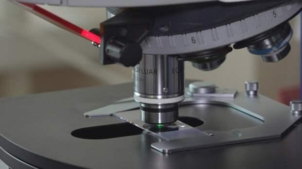 """Ученые из США смогли """"запутать"""" и измерить два макрообъекта"""