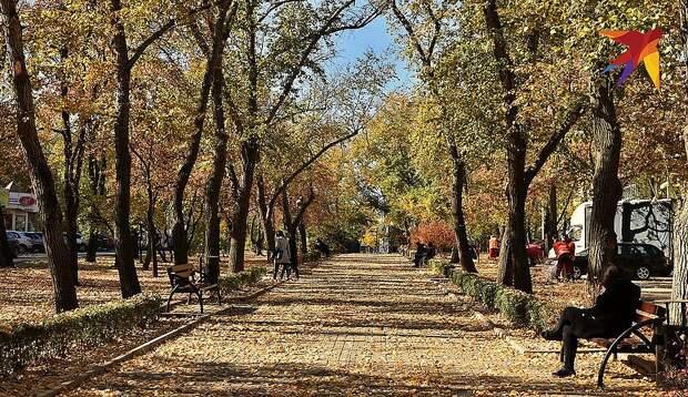 Осень в донецком парке. ФОТО Евгении КАРПАЧЕВОЙ