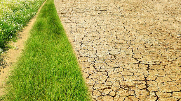 В Google показали, что случилось с климатом Земли за последние 36 лет