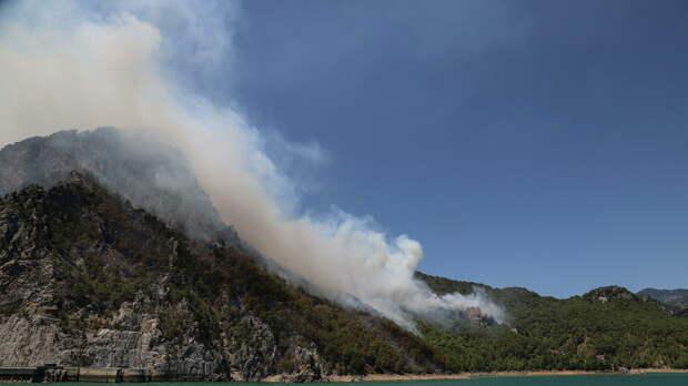 Лесной пожар в Манавгате, провинция Анталья, Турция - РИА Новости, 1920, 29.07.2021