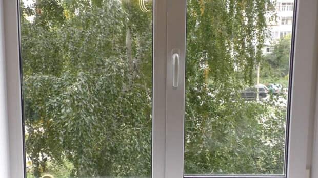 Простой и действенный способ отмыть окна до блеска