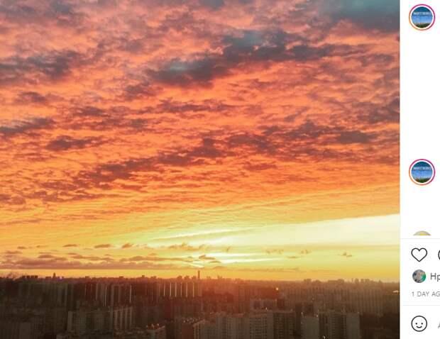 Фото дня: перепаханное небо