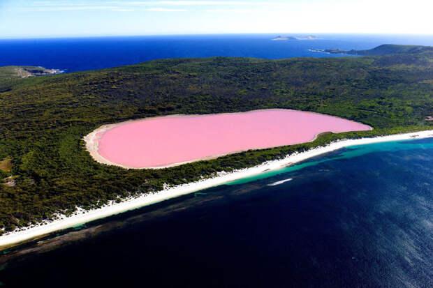 10 удивительных загадок природы
