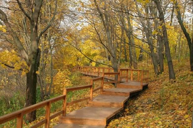 Сотрудники «Мосприроды» проведут 24 сентября экскурсию по Долине реки Сходня