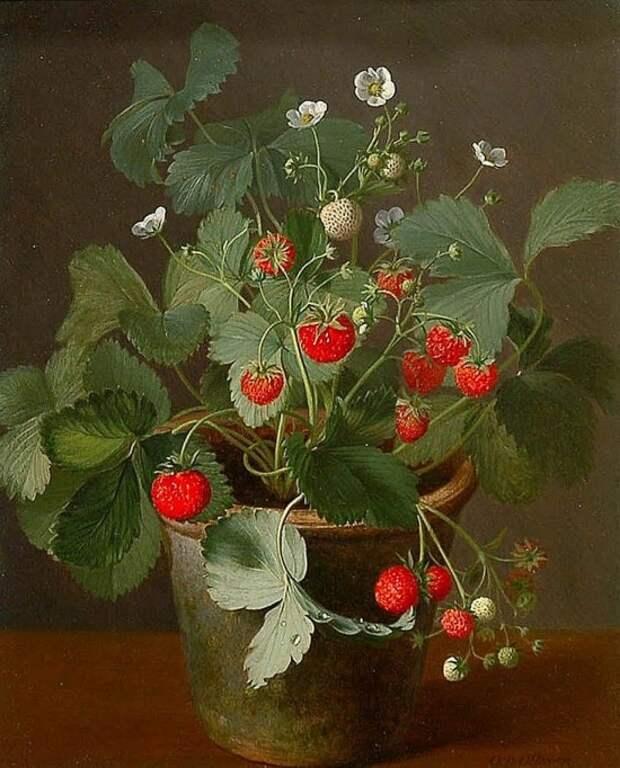 Художник Otto Diderich Ottesen (1816-1892). Лирические портреты цветов
