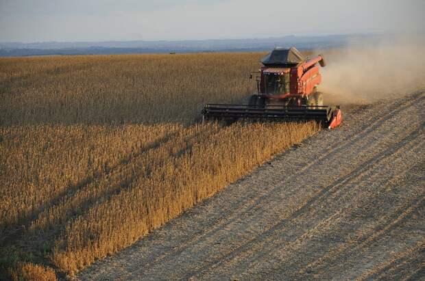 В Удмуртии с начала года под посевы вернули 7,6 тыс гектаров заброшенных земель
