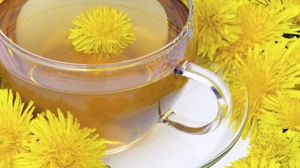 Вот 7 вещей, которые произойдут с вашим телом, если вы начнете пить чай из одуванчиков