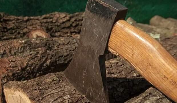 Уголовное дело по факту вырубки леса на 120 тысяч заведено вСвердловской области