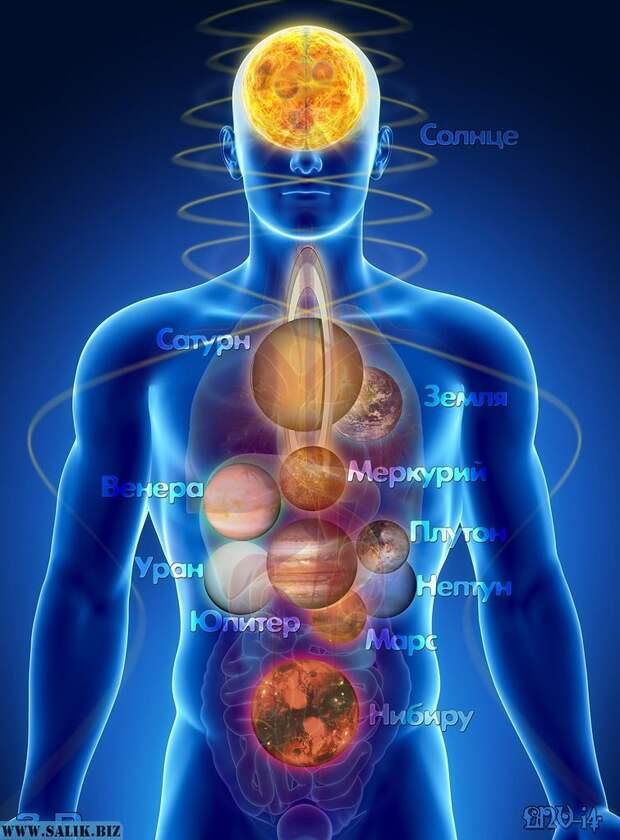 Тело человека – это тело солнечной системы