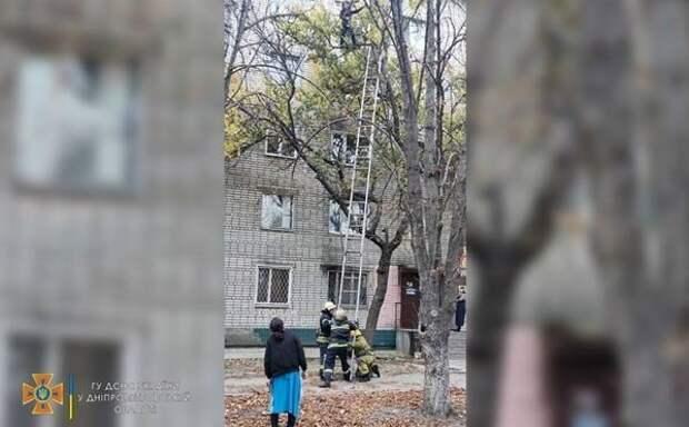 Беременную женщину сняли с дерева на Днепропетровщине