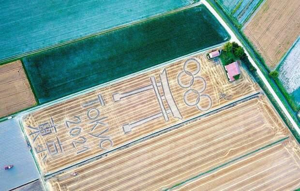 Итальянский фермер нарисовал символ Олимпиады трактором