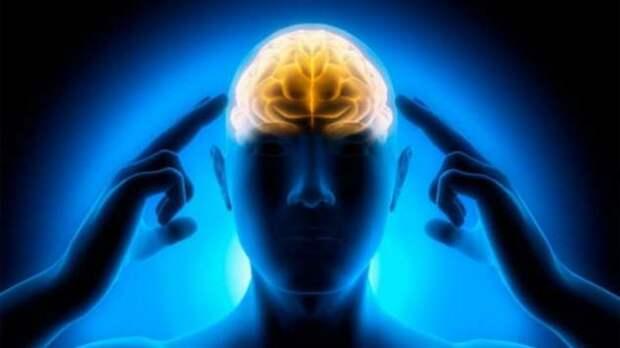 Загадка связи Сознания и Мозга