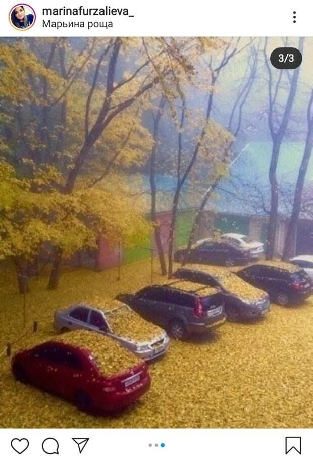 Фото дня: автомобили в Марьиной роще засыпало «золотом»