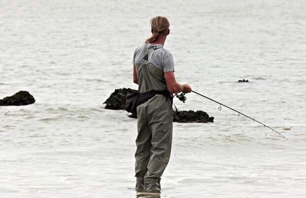 Керченского рыбака-браконьера осудили на два года условно за вылов креветки