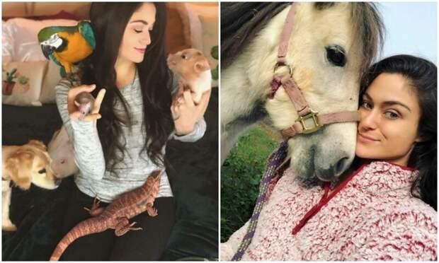 Спасает коров, лам и змей: американка устроила дома приют для 200 животных
