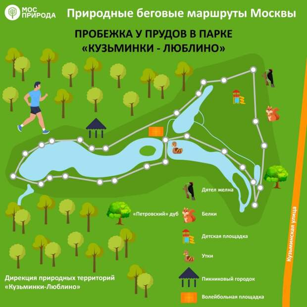 Инфографика беговой маршрут