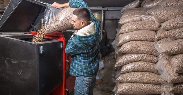 Холод – не тетка: Польша и Литва переходят на древесное топливо из Беларуси