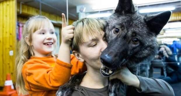 Редкая история дружбы между ребенком и диким зверюгой