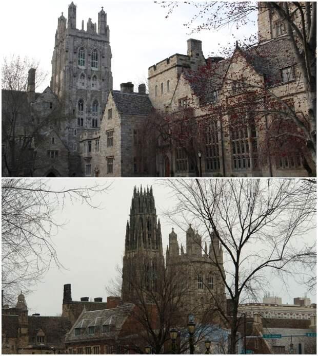 Yale University – один из наиболее престижных университетов мира (Нью-Хейвен, США).