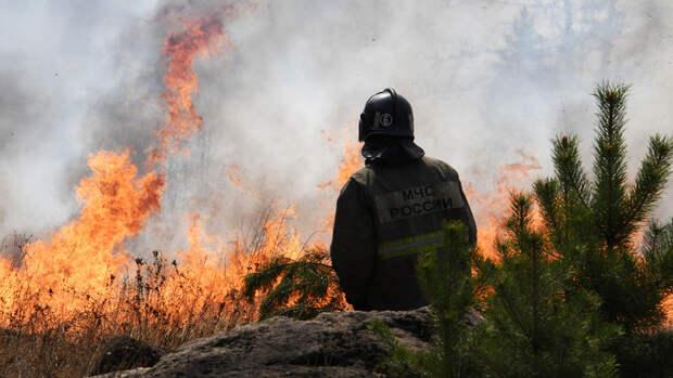 Школьницы из Пермского края сожгли ферму ради видео в TikTok