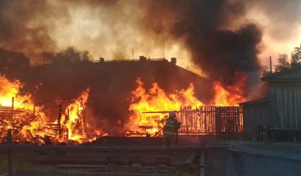 «Хорошо, что небыло ветра»: крупный пожар угрожал жилым домам врайоне Карелии