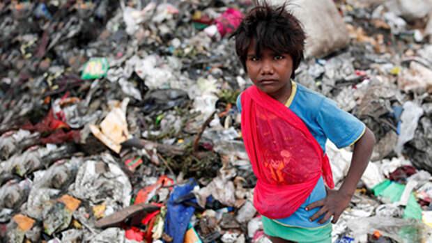 Индия: борьба за экологию