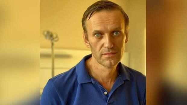 Названы мотивы организаторов митинга в поддержку Навального