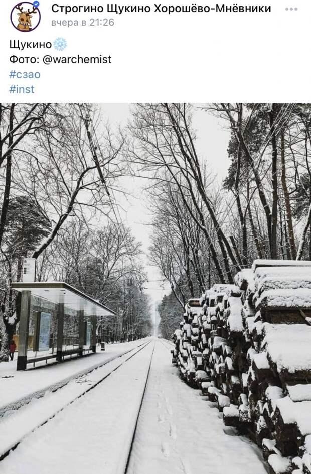 Фото дня: романтика зимнего Щукина