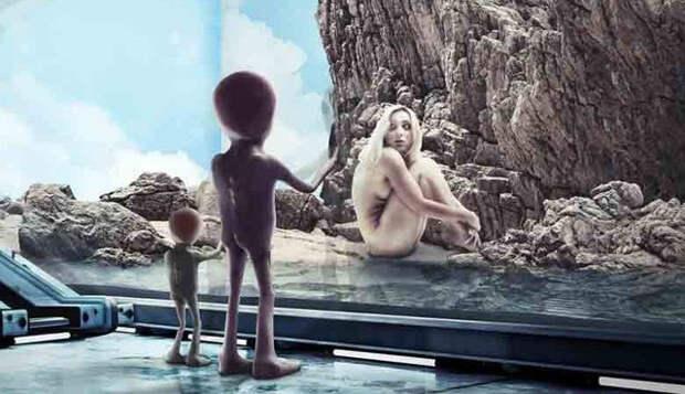 Гипотеза зоопарка объясняет, почему инопланетяне не выходят с нами на контакт