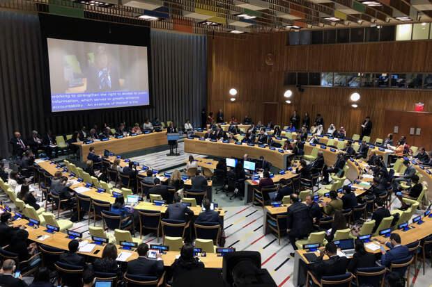 ООН громит Украину за закон «о переходном периоде» – Сивохо
