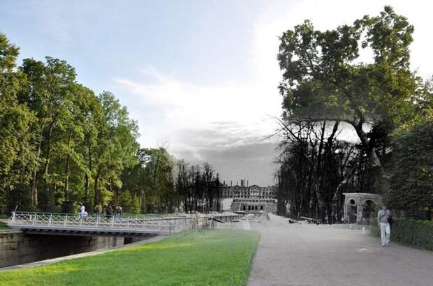 Петергоф 1943-2011 Морской канал в Нижнем парке. Дуб пережил все и не изменился блокада, ленинград, победа