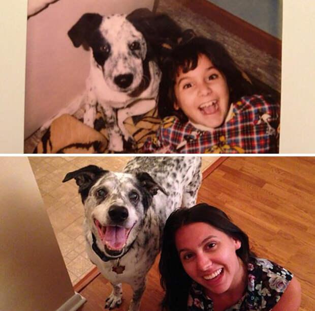 Лучшие друзья с 1997 года до и после, друзья, собаки, фото
