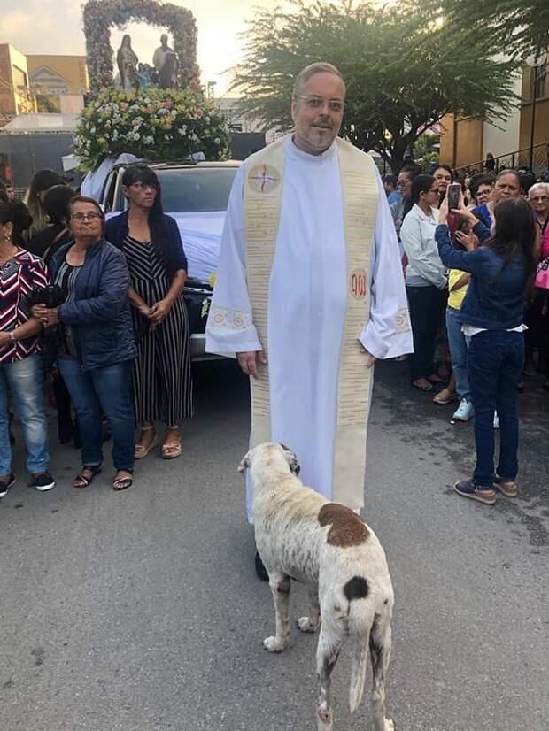 Священник и собака