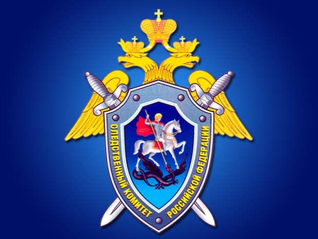СК примет исчерпывающие меры для разбирательства массового убийства детей в Казани в результате стрельбы