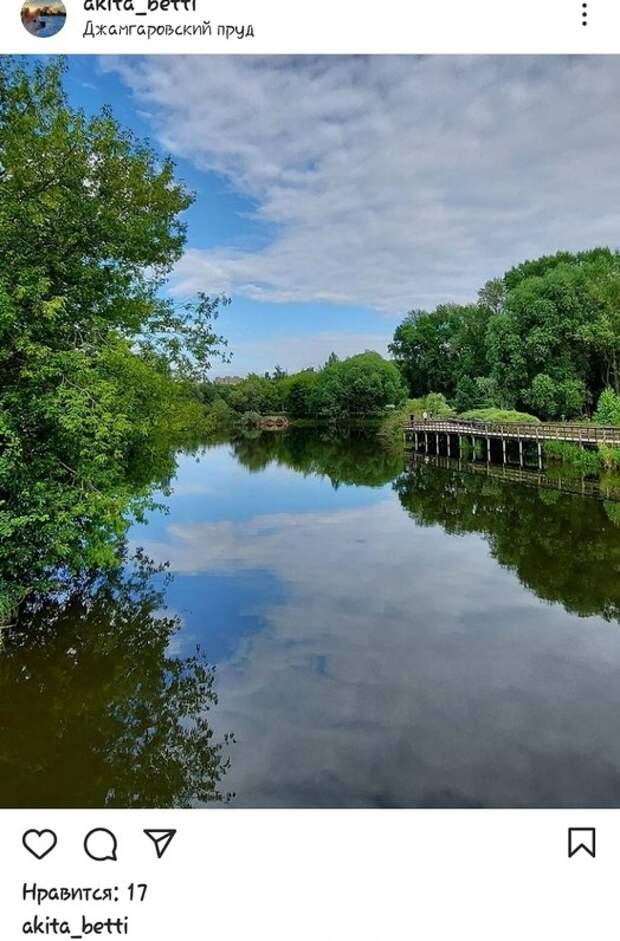 Фото дня: «два неба» Джамгаровского пруда