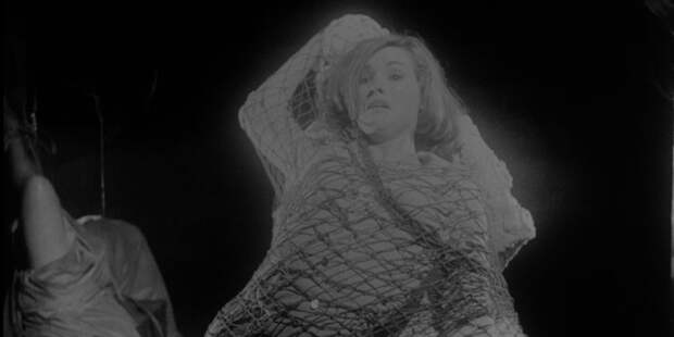 Из классики: крутые хоррор-фильмы, которые сняли женщины