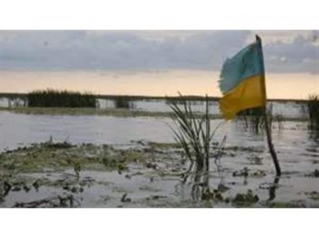 Семь лет мерзости и запустения. Как Украина дважды потеряла государство