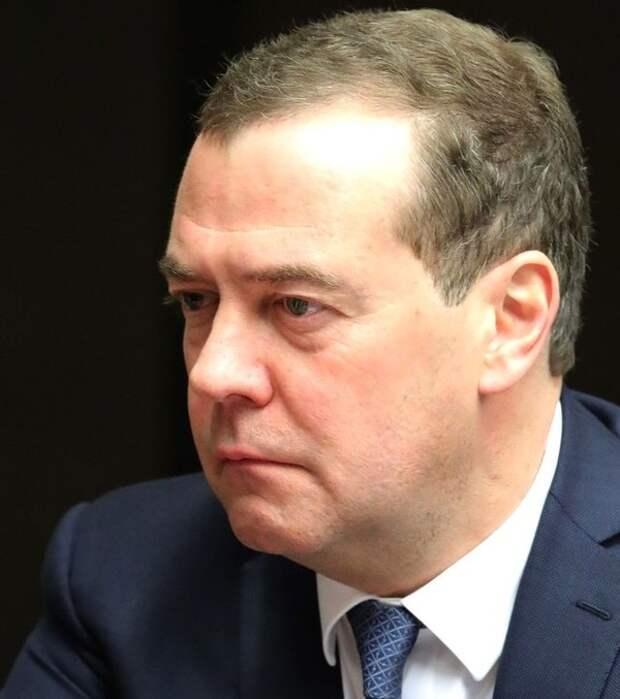 Пока Дмитрий Медведев отдыхал в дельте Волги, ему нашли новое занятие