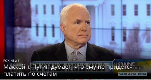 Ущербные шавки против Путина