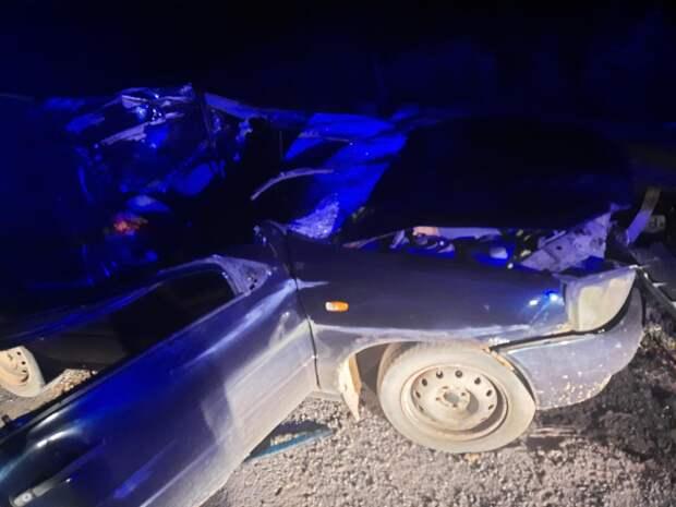 В Удмуртии в результате ДТП с лосем погибла пассажирка автомобиля