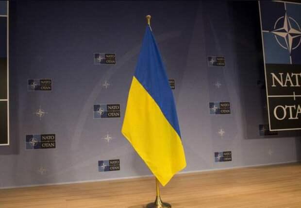 В США назвали причины, по которым «Украина никогда не попадет в НАТО»