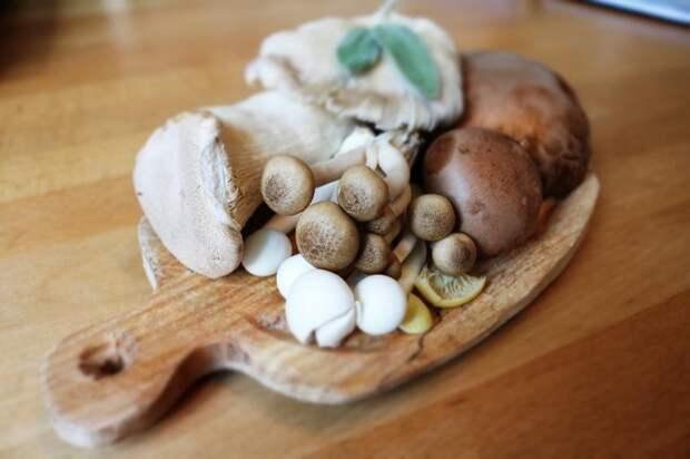 Как отличить съедобные грибы отнесъедобных