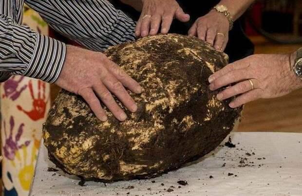 В Ирландии нашли кусок масла времен Иисуса Христа