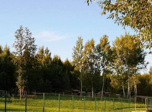 80 соток на 1-й линии Волги под коттедж/поместье для рыбаков и охотников.