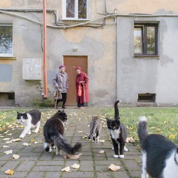 13 жизненных фото повседневной России, уродливые и красивые одновременно