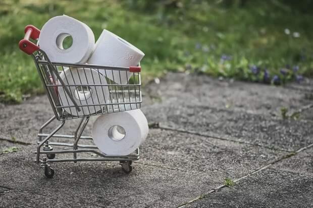 Закупайте впрок: как туалетная бумага стала примером для мирового бизнеса