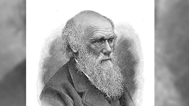 """Ученый из США заметил расистские убеждения в книге Дарвина """"Происхождение человека"""""""