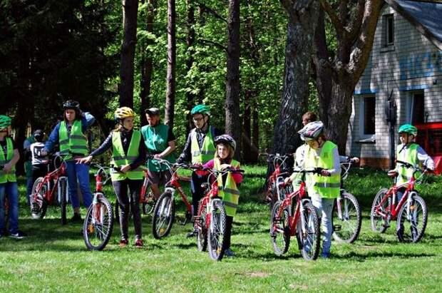 Кешбэк за купленные путевки в детские лагеря можно будет получить с 15 июня
