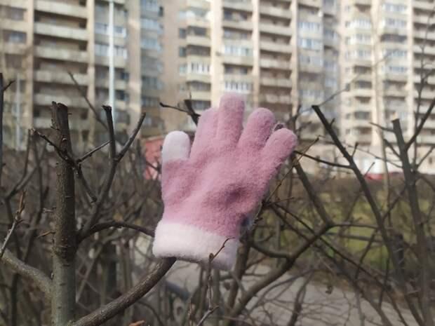 На улице в Петербурге нашли одинокого ребенка с синяками на теле